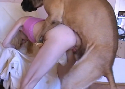 Hayvanlı porno Full Animals Dog Porn zoo porno video
